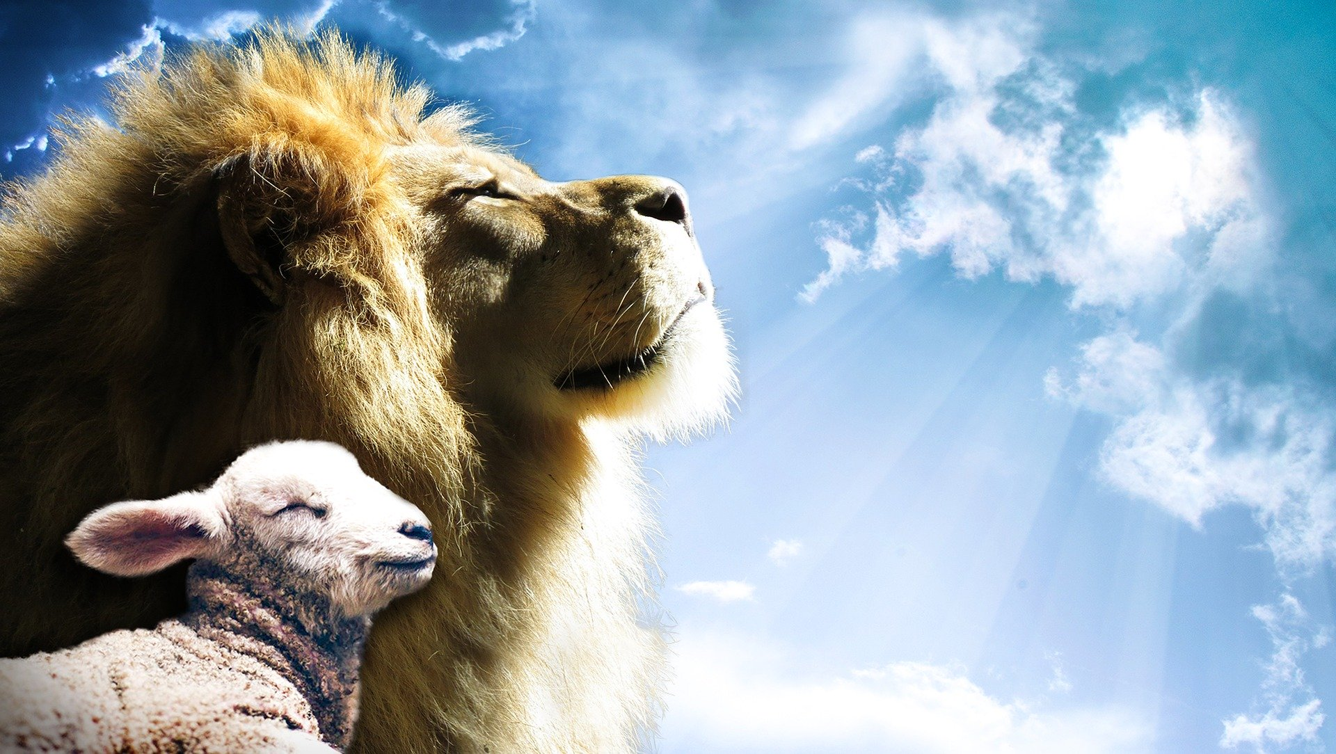 Image of lamb and lion by Jeff Jacobs from Pixabay
