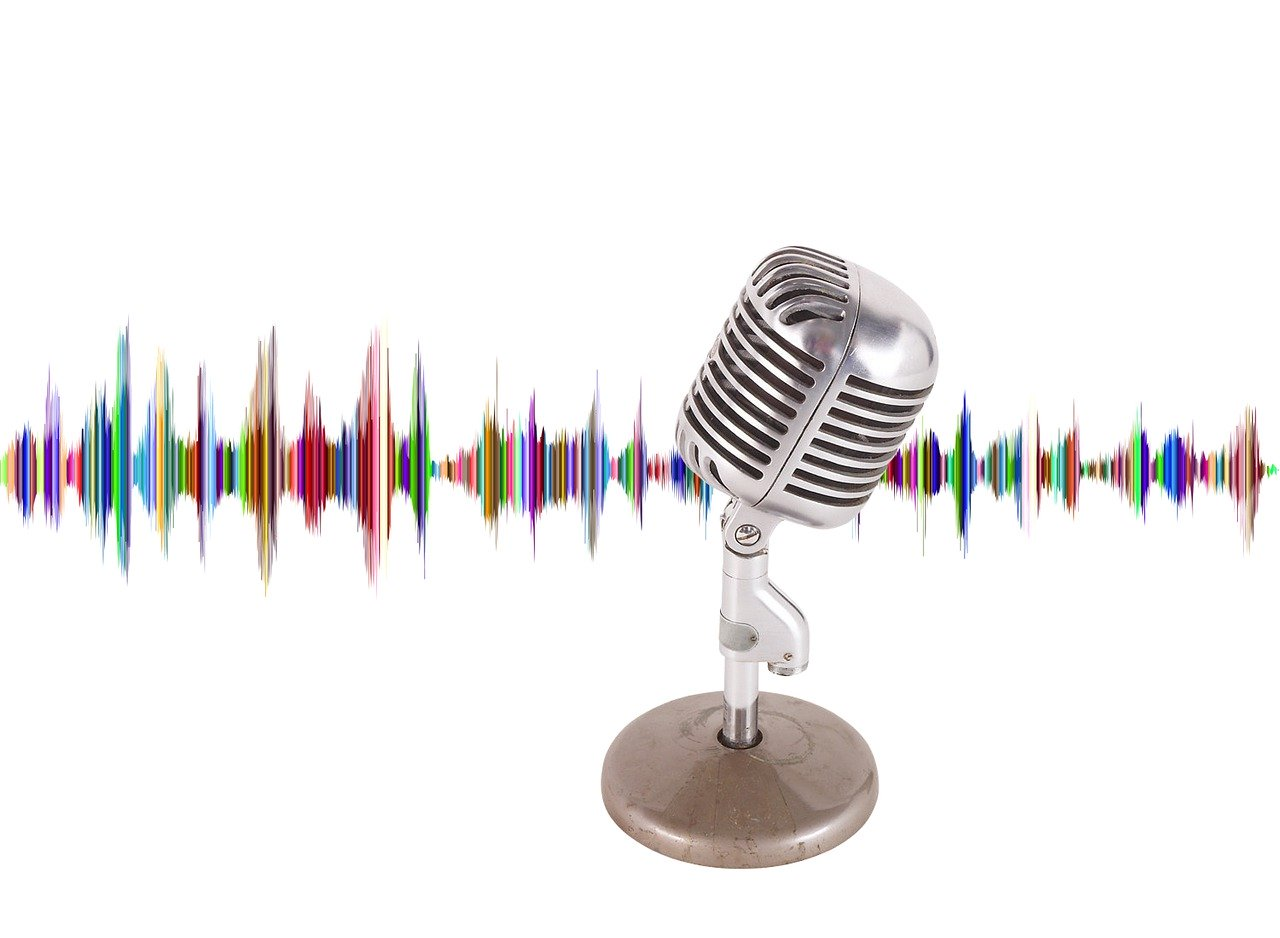 Microphone and digital audio image